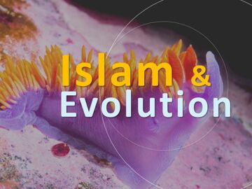 islamevolution