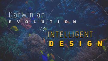 darwin-360×203